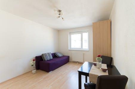 Wohnung zur Miete ab 01 Juli 2020 (Wilhelmstraße, Vienna)