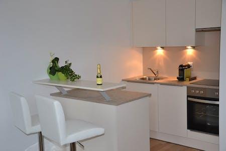 Wohnung zur Miete ab 01 Aug. 2020 (Obkirchergasse, Vienna)
