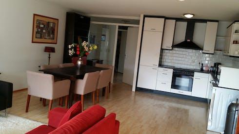 Wohnung zur Miete ab 02 Jan. 2021 (Gedempte Zalmhaven, Rotterdam)