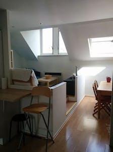 整套公寓租从02 3月 2020 (Square Ambiorix, Brussels)