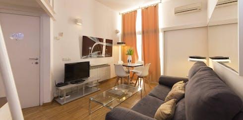 Appartement à partir du 24 Dec 2019 (Calle de Atocha, Madrid)