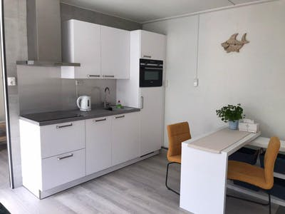 Apartment for rent from 16 Oct 2020 (Pauwstraat, Utrecht)