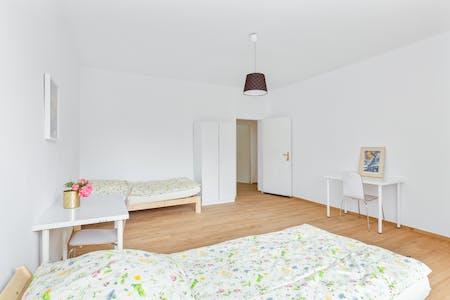Shared room for rent from 01 Dec 2019 (Holländerstraße, Berlin)