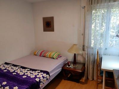 Stanza privata in affitto a partire dal 01 ott 2020 (Calle del Arroyo de las Pilillas, Madrid)