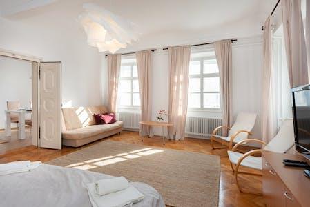 Wohnung zur Miete ab 01 Apr. 2020 (Breg, Ljubljana)