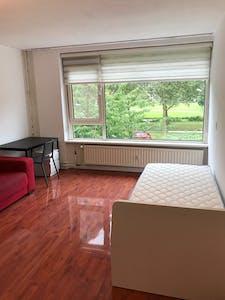 Chambre privée à partir du 31 Aug 2020 (Vredeman de Vriesstraat, Rotterdam)