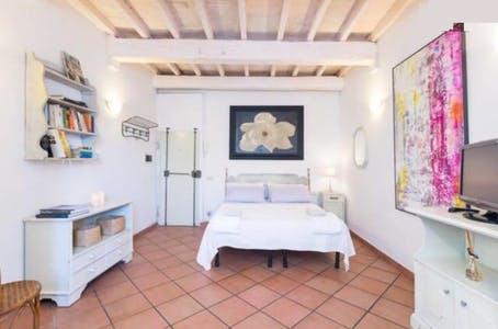 Apartment for rent from 01 Mar 2020 (Via di San Giuseppe, Florence)