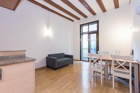 Apartamento para alugar desde 01 Feb 2020 (Carrer Nou de Sant Francesc, Barcelona)