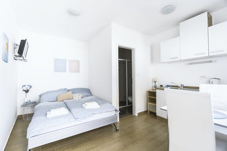 Apartment for rent from 01 Mar 2020 (Krakovska ulica, Ljubljana)