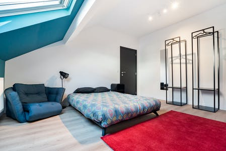 Private room for rent from 01 Jan 2021 (Rue Mercelis, Ixelles)