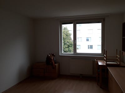 Shared room for rent from 01 Feb 2020 (Schöpfleuthnergasse, Vienna)