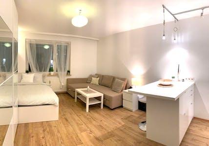 Apartment for rent from 15 Dec 2019 (Senefeldergasse, Vienna)