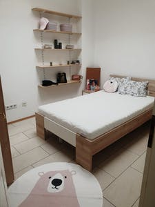 Privé kamer te huur vanaf 31 Jan 2020 (Siebertgasse, Vienna)