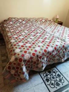 Private room for rent from 01 Jul 2020 (Via Portuense, Roma)