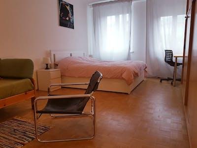 Apartment for rent from 01 Jan 2020 (Untere Donaustraße, Vienna)