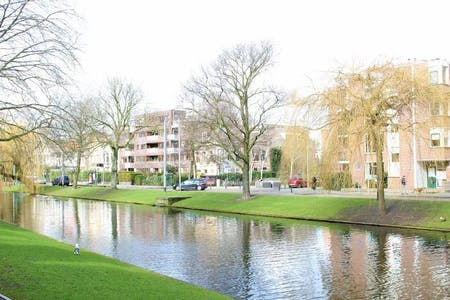 Apartment for rent from 26 Jan 2020 (Noordsingel, Rotterdam)