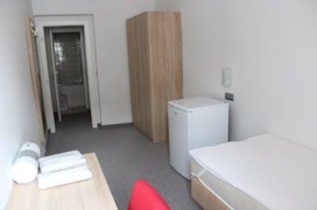 Privé kamer te huur vanaf 02 mei 2020 (Bergsteiggasse, Vienna)