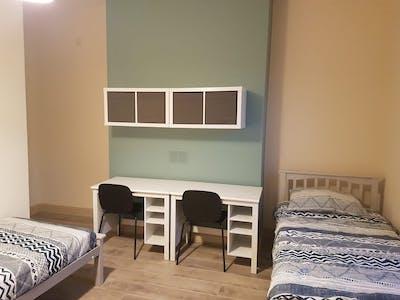 Mehrbettzimmer zur Miete ab 22 Feb. 2020 (Royal Canal Terrace, Dublin)