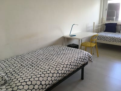 WG-Zimmer zur Miete ab 01 Juni 2020 (Rua General Leman, Lisbon)