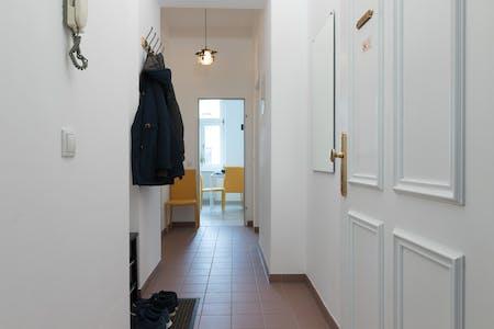 Wohnung zur Miete ab 30 März 2020 (Hebbelgasse, Vienna)