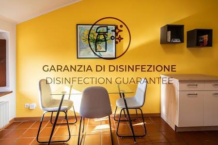 Disponibile dal 05 nov 2021 (Via Castellana, Udine)