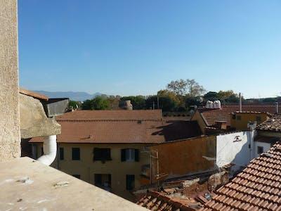 Kamer te huur vanaf 01 aug. 2018  (Via Antonio Ceci, Pisa)