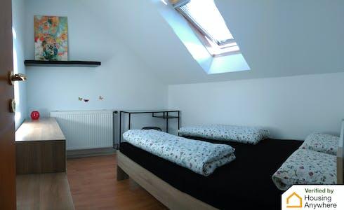 Room for rent from 15 Sep 2018 (Triglavska ulica, Ljubljana)