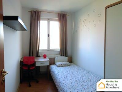 Private room for rent from 01 Feb 2020 (Triglavska ulica, Ljubljana)
