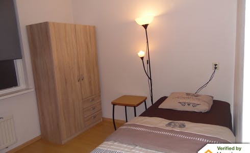 Room for rent from 01 Aug 2018 (Lammermarkt, Leiden)