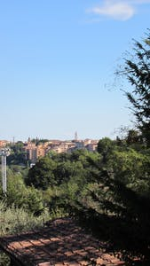 Via Fiorentina