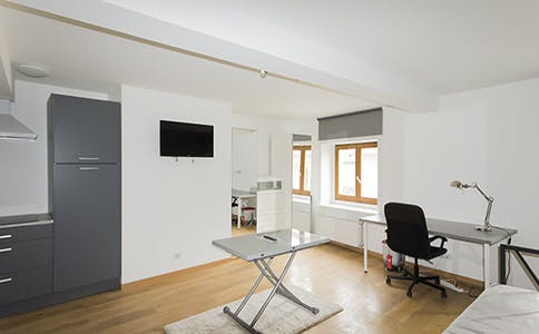 Appartement à partir du 22 mai 2018 (Rue Gustave Simon, Nancy)