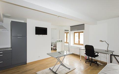 Wohnung zur Miete ab 01 Okt. 2020 (Rue Gustave Simon, Nancy)