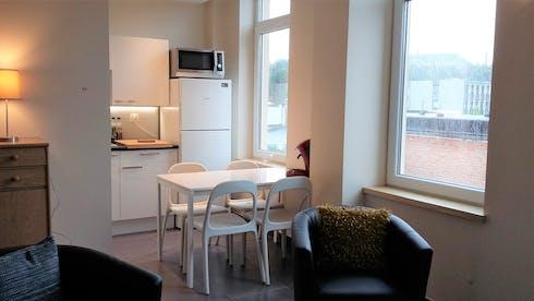 Wohnung zur Miete ab 10 Apr. 2020 (Rue Darchis, Liège)