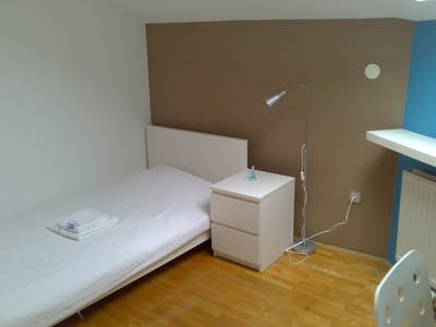 Private room for rent from 01 Jul 2020 (Dalmatinova ulica, Ljubljana)