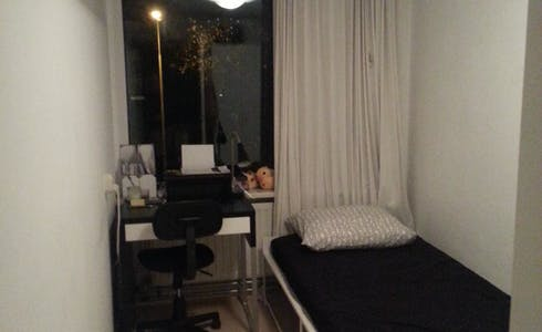 Room for rent from 15 Dec 2017 till 30 Jun 2018 (Van Het Hoffstraat, Wageningen)