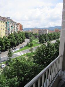 Appartamento in affitto a partire dal 01 Jun 2020 (Via Onorato Vigliani, Torino)