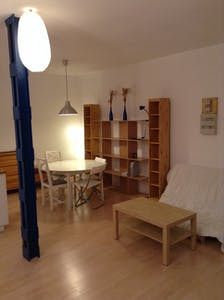 Apartment for rent from 01 May 2019 (Rue du Faisan, Strasbourg)