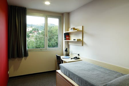 Private room for rent from 01 Feb 2020 (Passeig dels Castanyers, Barcelona)